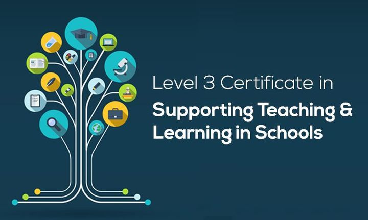 cache level 3 teaching and learning Cache level 3 award in supporting teaching and learning in schools cache level 3 award in supporting teaching and learning in schools click to enter this course.
