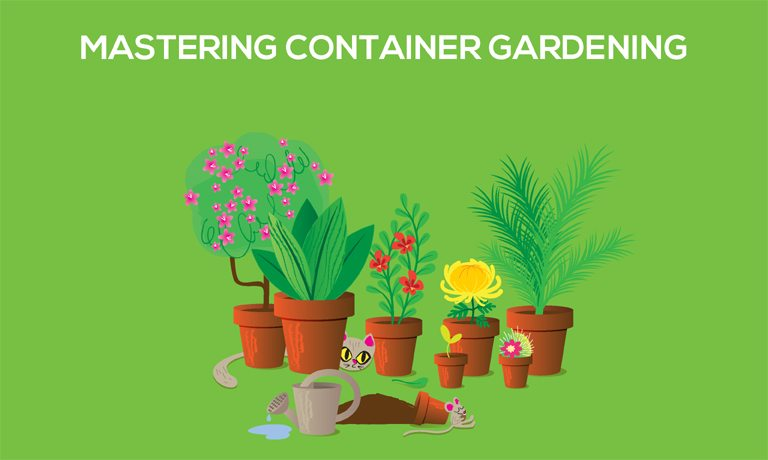 Mastering Container Gardening