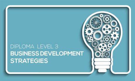 DIPLOMA IN BUSINESS DEVELOPMENT STRATEGIES LEVEL 3