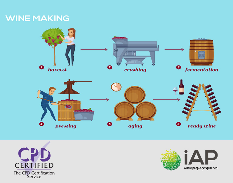 Wine making course