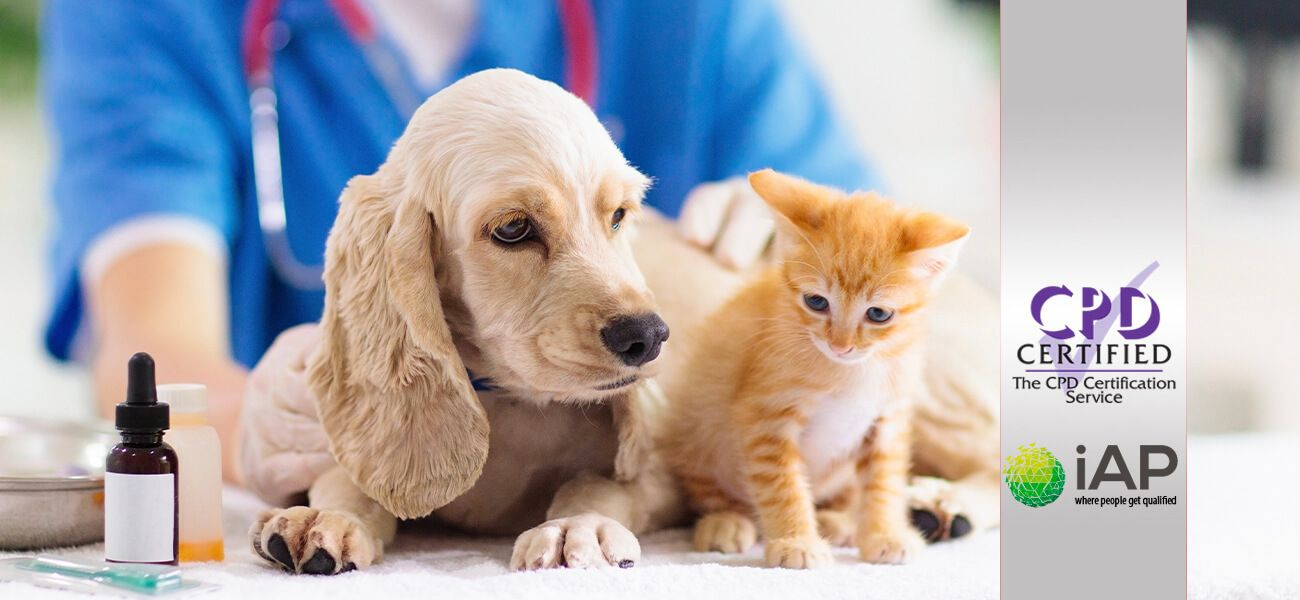 Advanced Certificate in Pet Care – Level 3